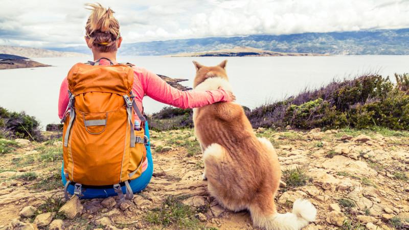 Partir avec son chien en rando ! Le guide absolu…
